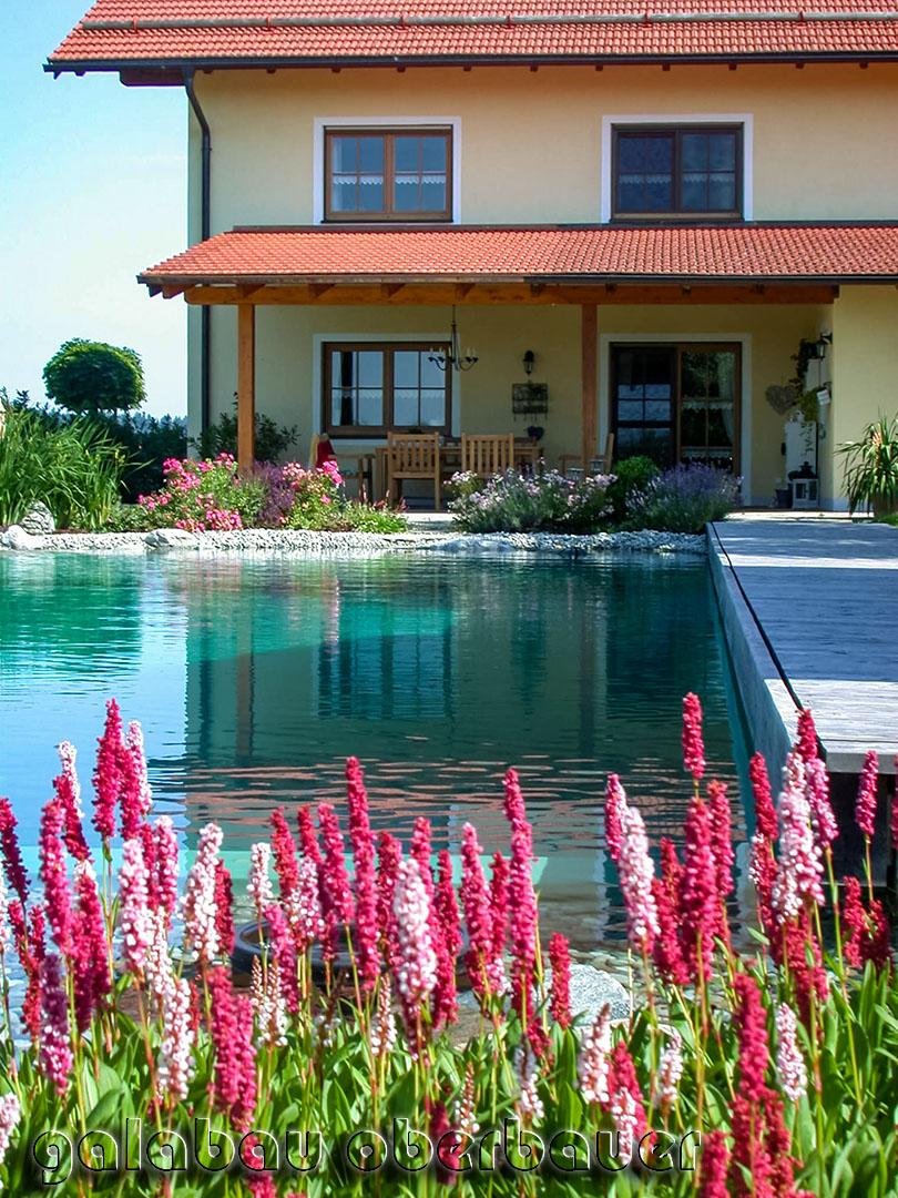 Wunderschöner Naturpool / Schwimmteich mit blühenden Blumen
